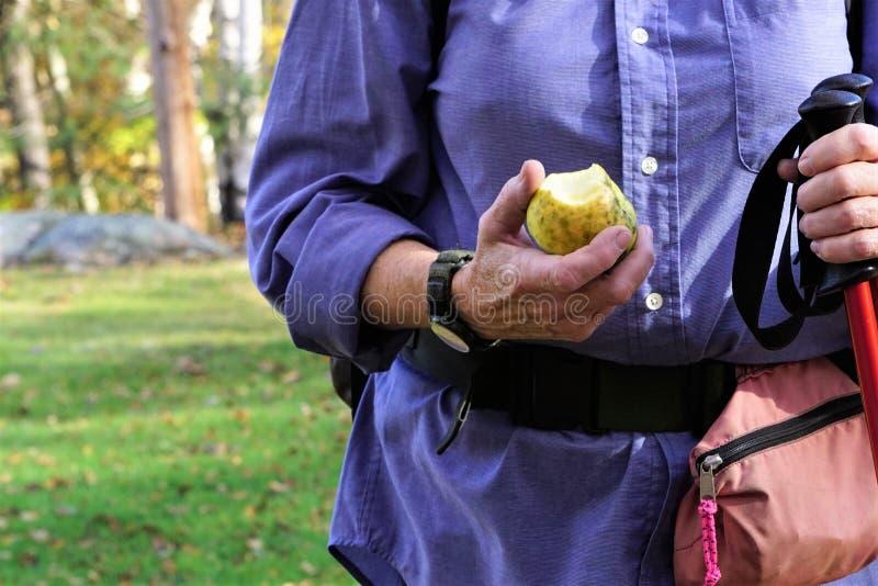 Ältere Wanderer essen Herbstapfel lizenzfreie stockfotos