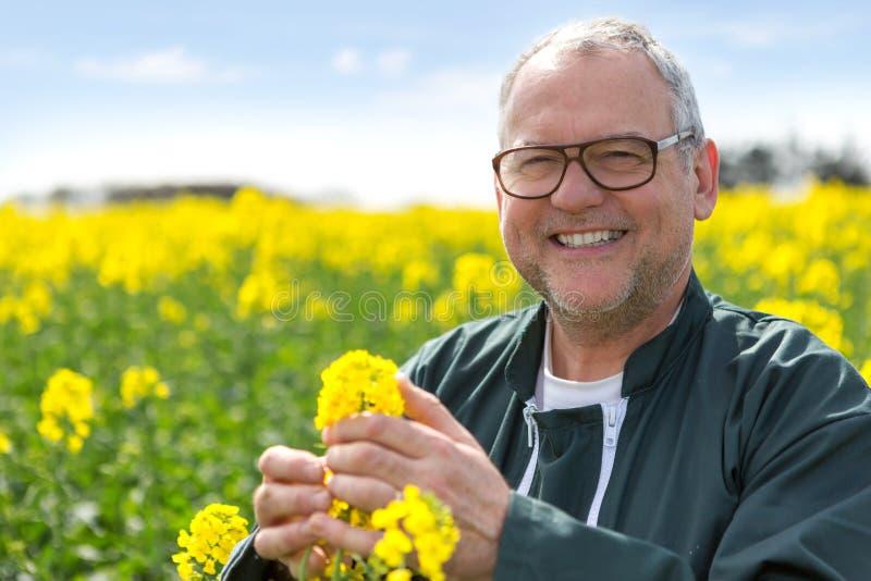 Älterer attraktiver Landwirt, der auf einem Gebiet des Rapses - Natur Co arbeitet stockbild