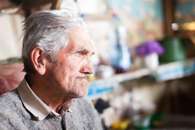 Älterer Landwirt Innen lizenzfreies stockbild