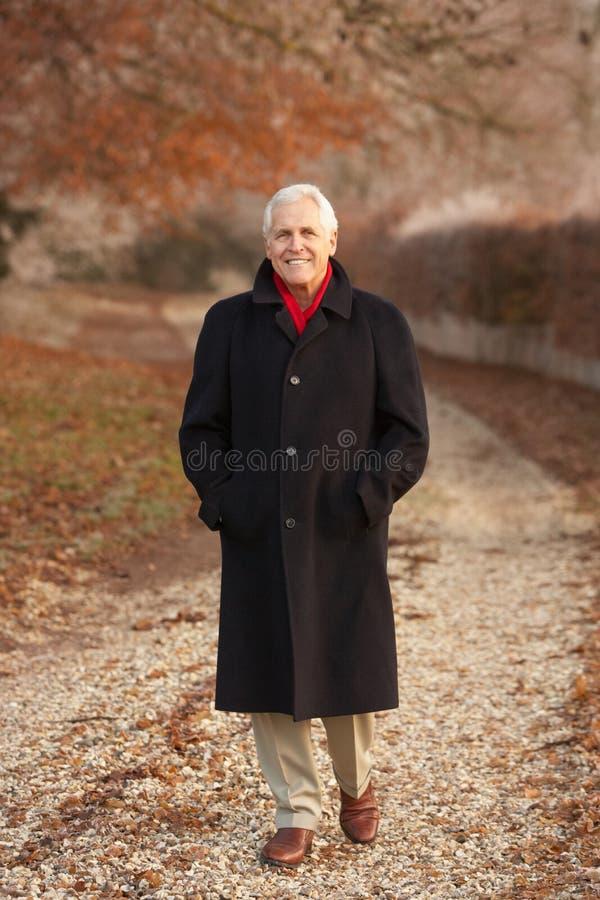 Älterer Mann auf Winter-Weg durch eisige Landschaft lizenzfreies stockbild