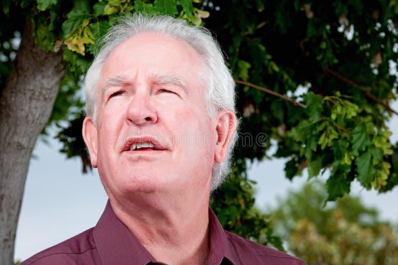 Älterer Mann, der gen Himmel mit Interesse schaut lizenzfreie stockbilder