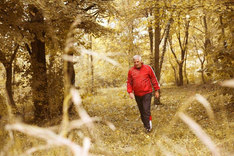 Älterer Mann, der im Park trainiert stockfoto
