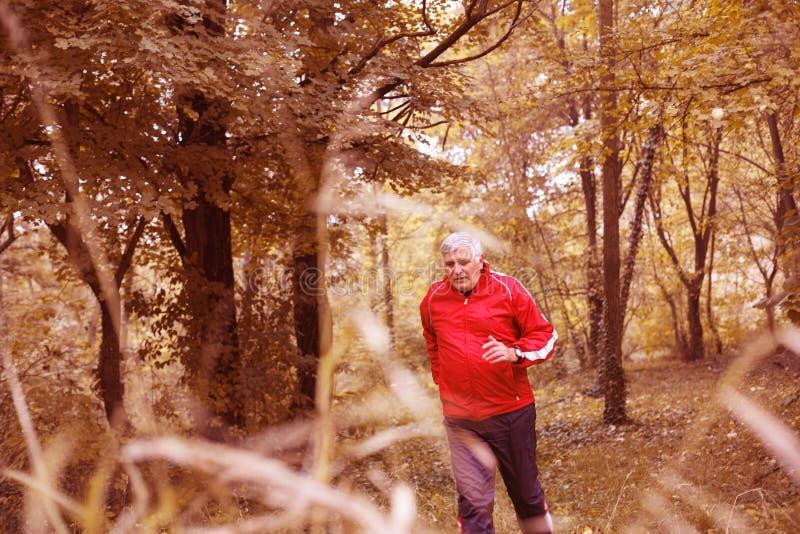 Älterer Mann, der im Park trainiert lizenzfreie stockfotos