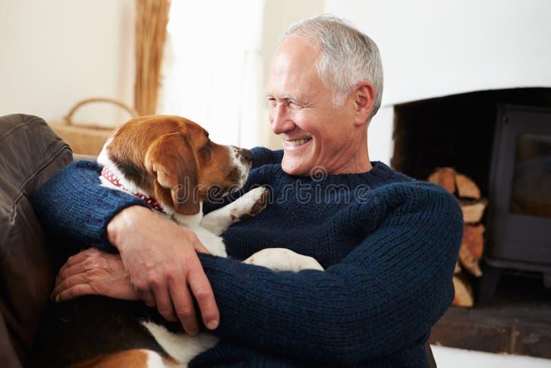 Älterer Mann, der sich zu Hause mit Schoßhund entspannt stockfoto