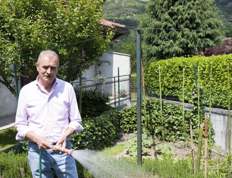 Älterer Mann-Gartenarbeit lizenzfreie stockfotos