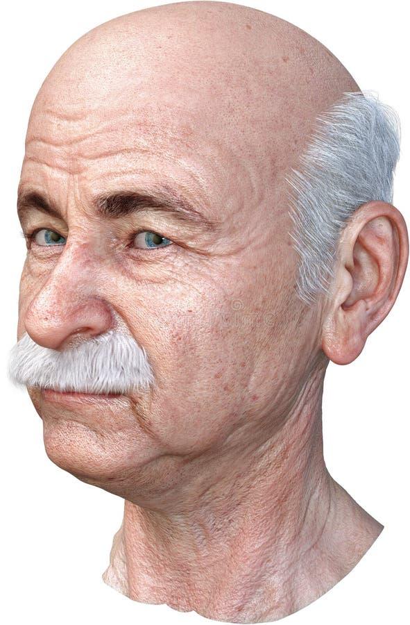 Älterer älterer Mann-Kopf lokalisierte, kahl lizenzfreie abbildung