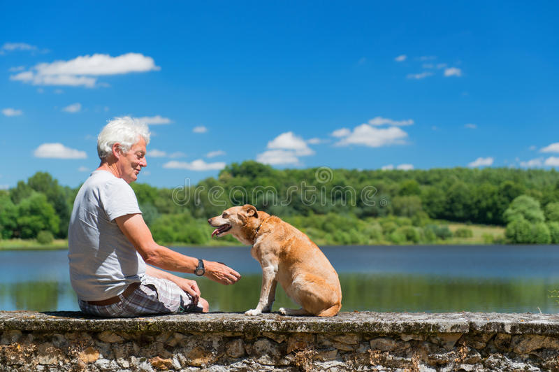 Älterer Mann mit altem Hund in der Naturlandschaft stockbild