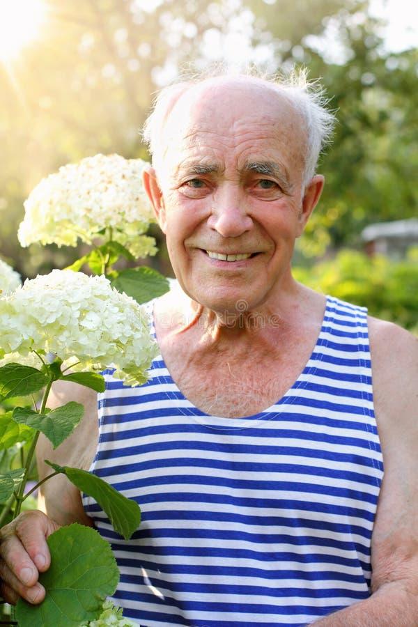 Älterer Mann mit blühender Hortensie lizenzfreies stockfoto