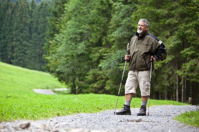 Älterer Mann Nordic, der draußen geht stockbild
