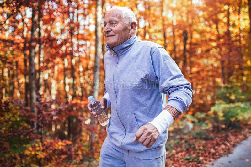 Älterer sportlicher Mann, der in Wald während der Morgengymnastik läuft stockbilder