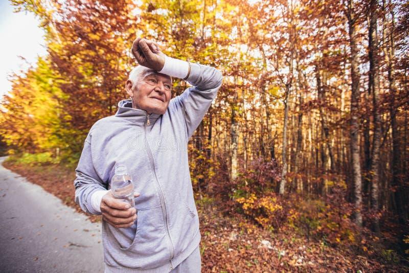 Älterer sportlicher Mann, der in Wald während der Morgengymnastik läuft lizenzfreie stockfotografie