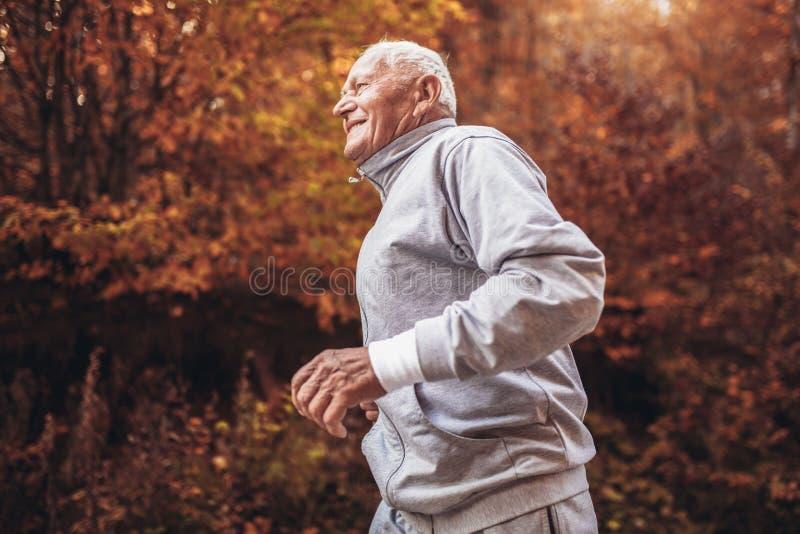 Älterer sportlicher Mann, der in Wald während der Morgengymnastik läuft lizenzfreies stockbild