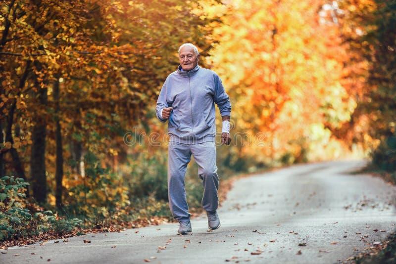 Älterer sportlicher Mann, der in Wald während der Morgengymnastik läuft lizenzfreies stockfoto