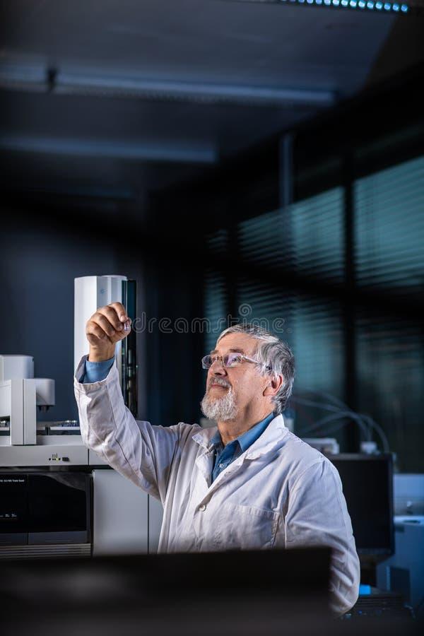 Älterer Wissenschaftler in einer Chemielabordurchführungsforschung - Betrachten von Gaschromatographieproben lizenzfreies stockbild