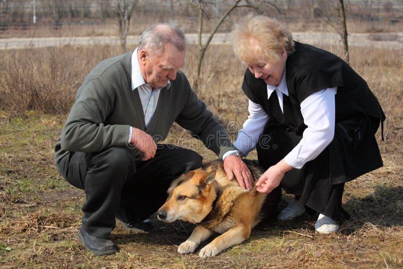 Älteres Paar streichelt einen Hund stockfotos