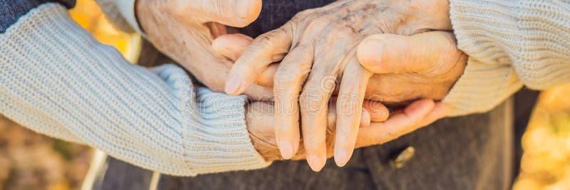 Älteres Paarhändchenhalten in Herbstpark FAHNE, LANGES FORMAT stockfotos