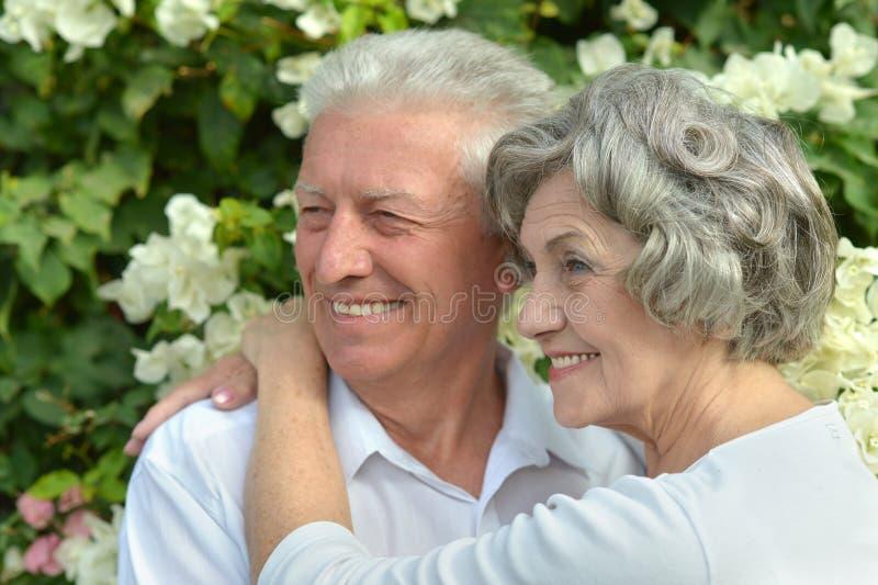 Älteres Paarstillstehen lizenzfreie stockfotografie