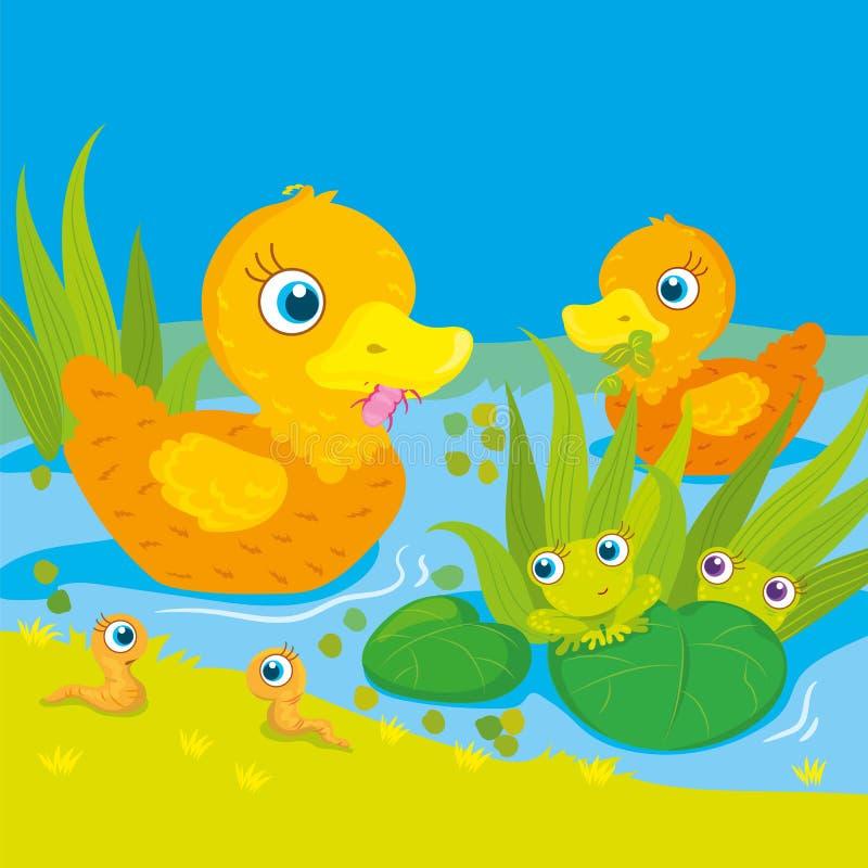 Änder och grodor på dammet stock illustrationer