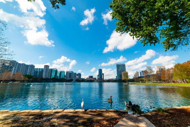 Änder och svanar i sjön Eola parkerar i Orlando arkivbilder