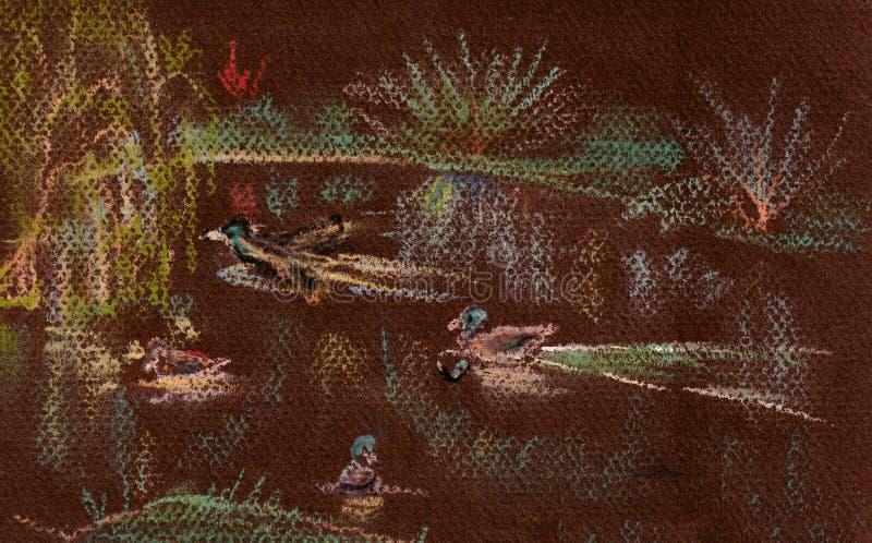 Änder på sjön stock illustrationer