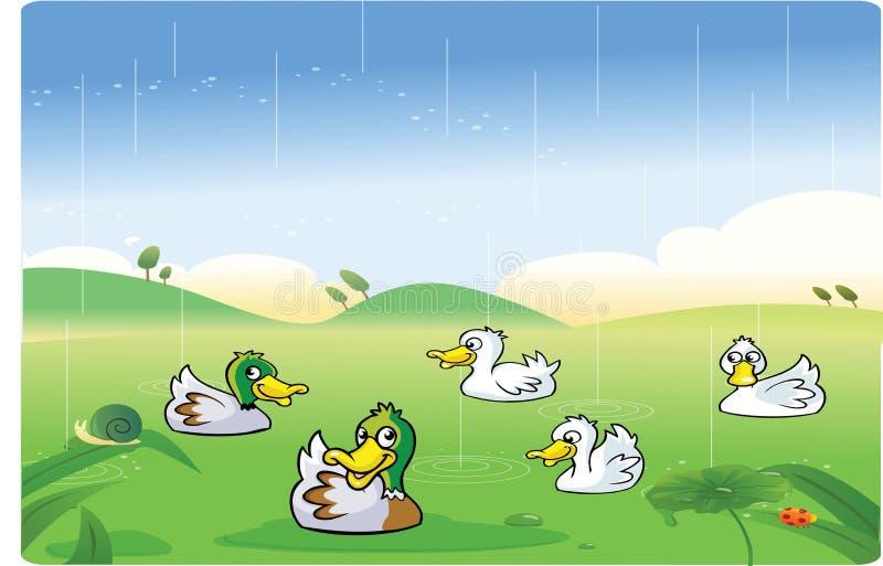 Änder som spelar i regnet vektor illustrationer