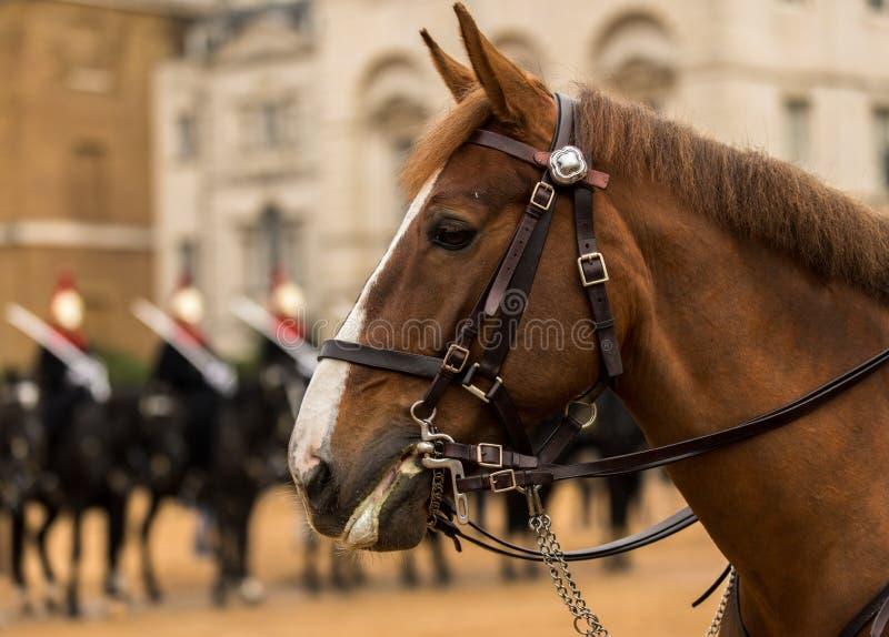 Ändra vakten för liv för drottning` s, London, UK royaltyfri fotografi