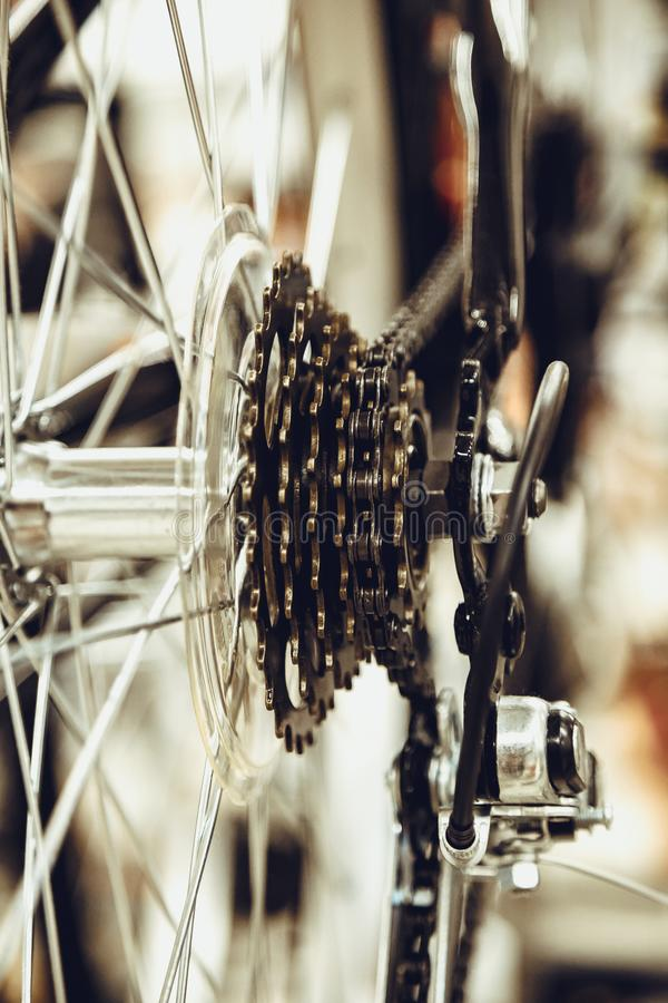 Ändrande enhet för cykelhastighet bakre hjul Stålcykelkedja Närbild för överföringskugghjul royaltyfria foton