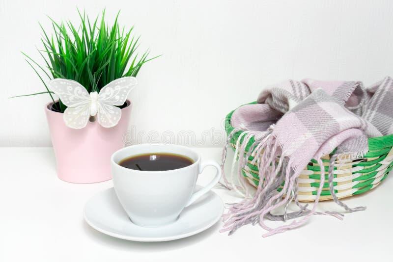 Ändrande säsonger från vintern som fjädrar - den gröna växten med den vita dekorativa fjärilen, en grön korg med varm woolen kläd royaltyfria foton