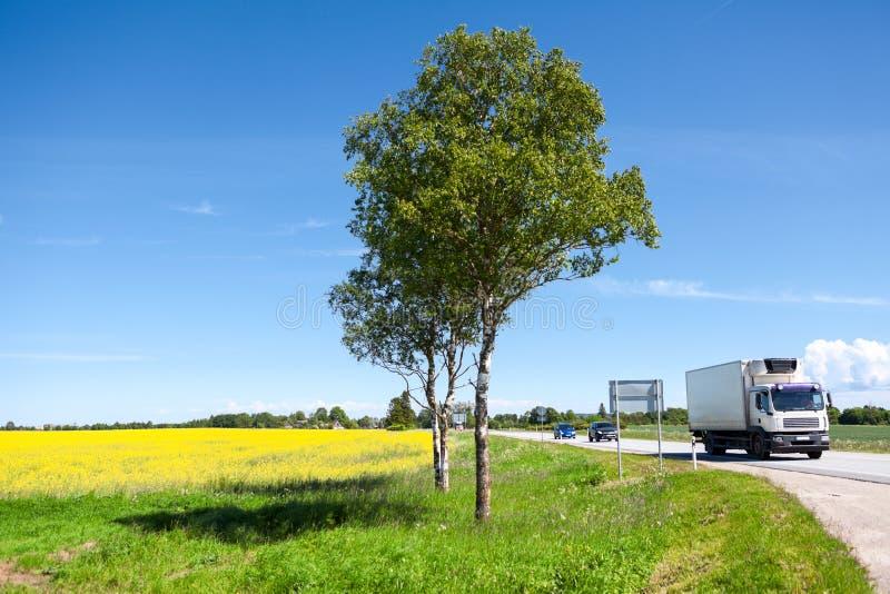 äng för Ljus-arbetsuppgift lastbil- och bilkörning belopp med gula blommor, landshuvudväg, sommar arkivfoton