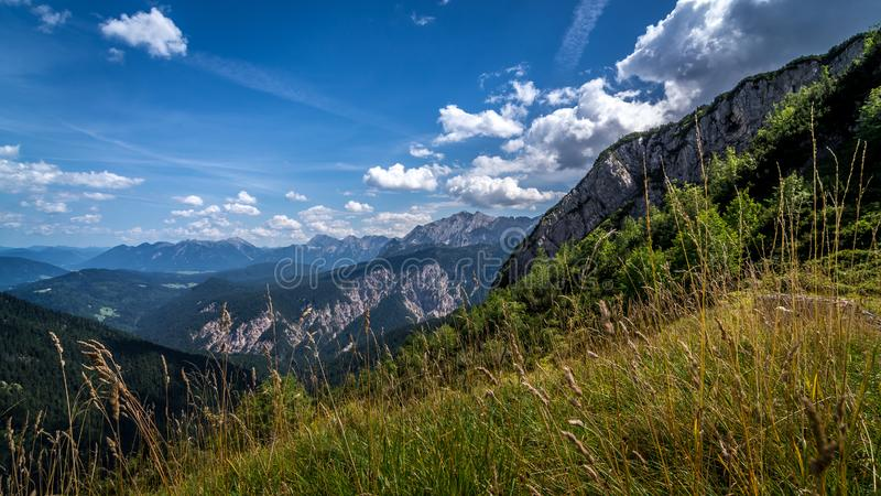 Äng i bergen som ses från de fotvandra slingorna tyska alps arkivbild