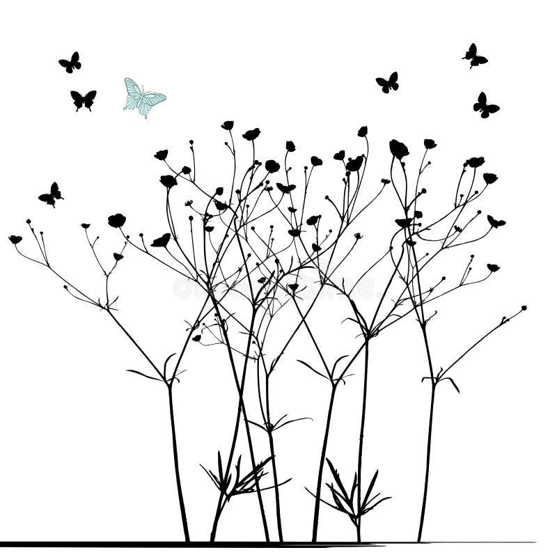 Äng i sommartid, växtvektor vektor illustrationer