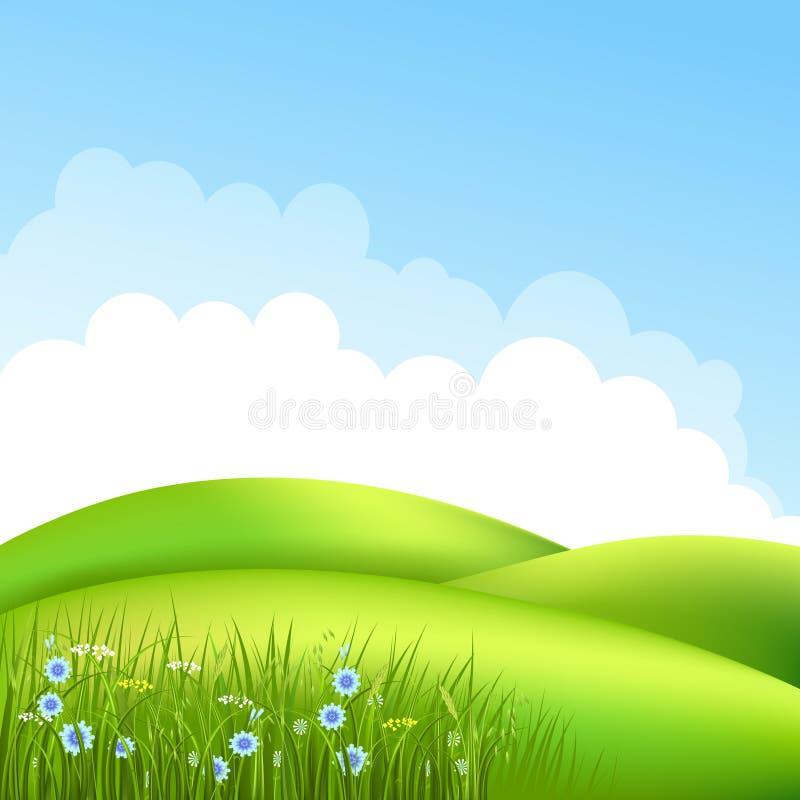 Äng med gräs 2 stock illustrationer
