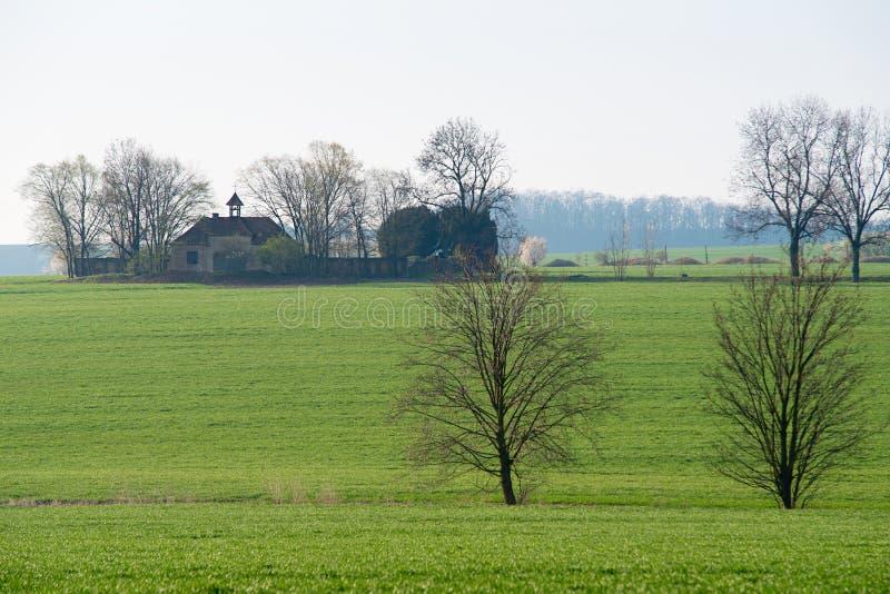 Äng med träd och en gammal kyrka fotografering för bildbyråer