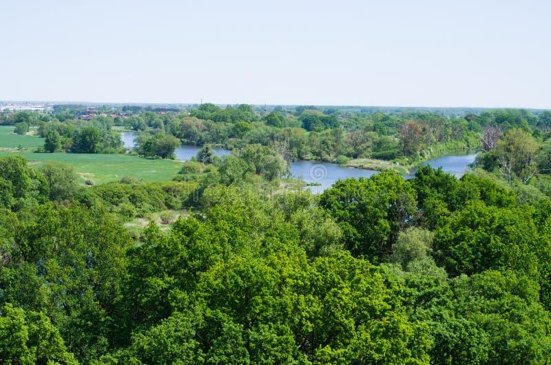 Äng- och Odra flod royaltyfri fotografi