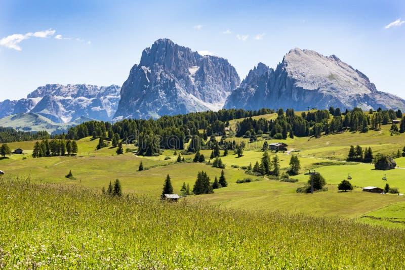 Ängar Dolomites Alpe di Siusi, södra Tyrol arkivfoto