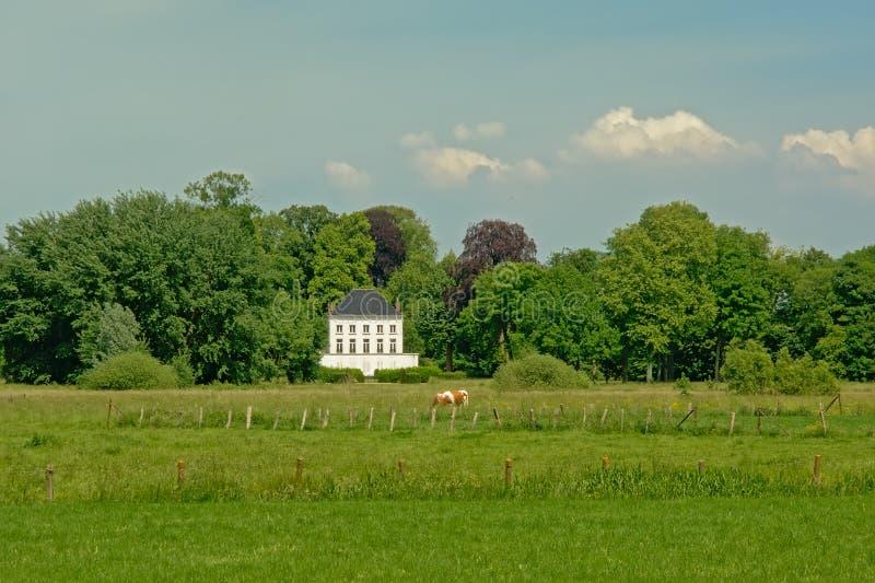 Ängar i den flemish bygden med en utsmyckad herrgård in mellan trädehind royaltyfri foto