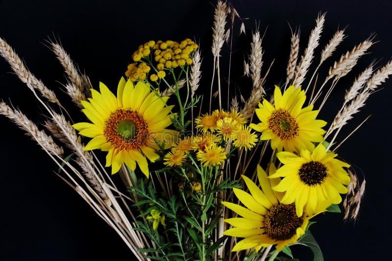Ängblommor med vetegrova spikar och ljusa gula solrosor på mörk bakgrund Symboliskt begrepp — sommar landsstil, sol royaltyfria bilder