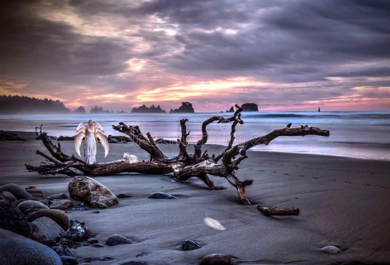 Ängel med vita vingar på den sandiga stranden med ett djur på solnedgången fotografering för bildbyråer
