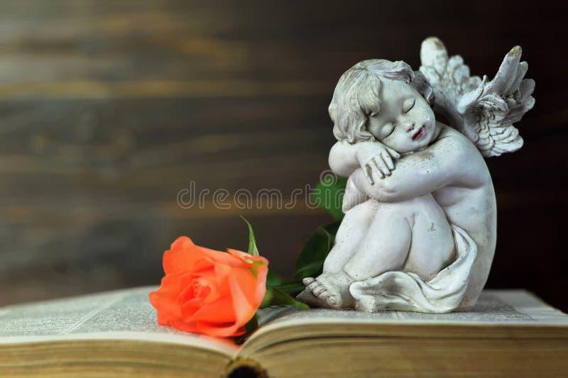 Ängel och ros på boken royaltyfri foto