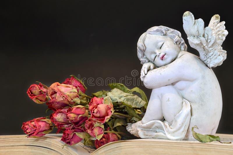 Ängel och rosor på den gamla boken arkivfoto