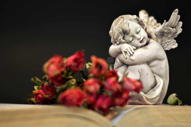 Ängel och torra rosor på den gamla boken royaltyfri bild