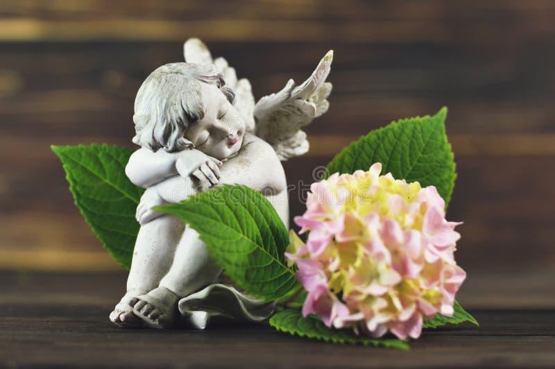 Ängel och vanlig hortensiablomma royaltyfria foton