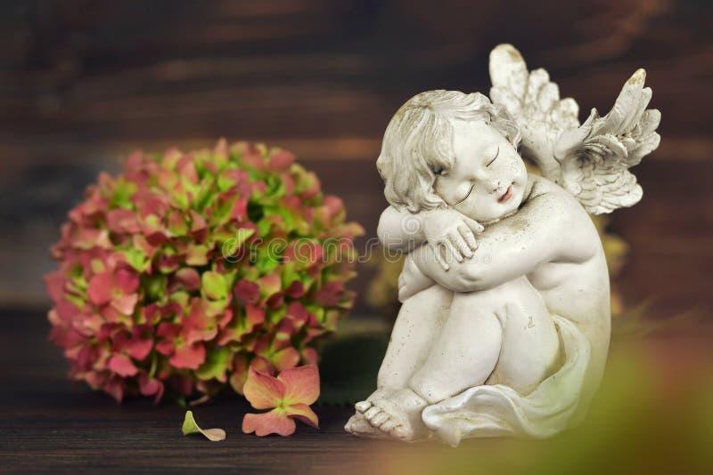 Ängel och vanlig hortensiablomma arkivbilder