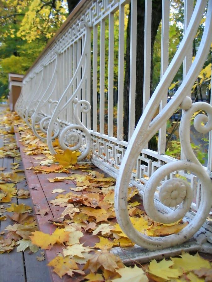 Download ängelbroestonia s tartu arkivfoto. Bild av green, fall - 242734