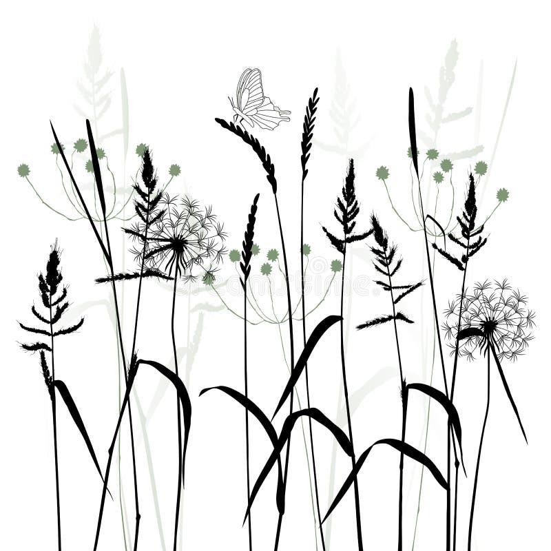 Ängen i sommartiden, växtvektor vektor illustrationer