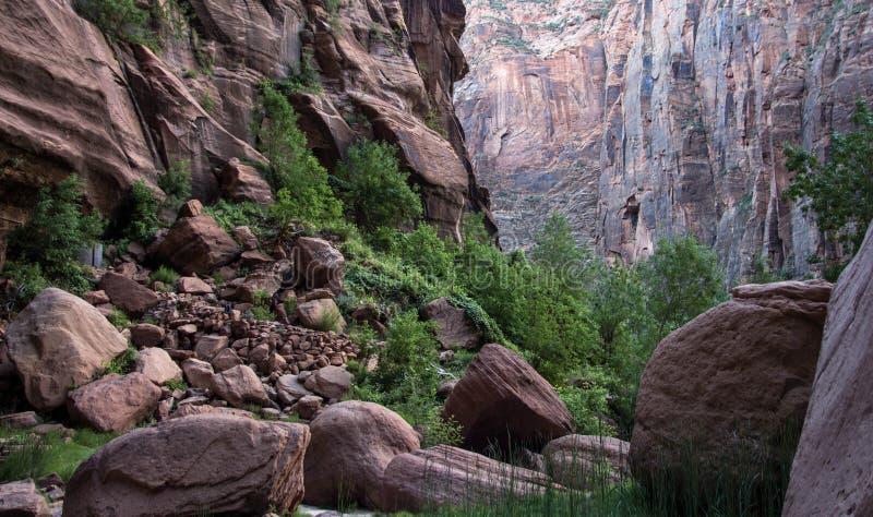 Änglar som landar Zion National Park 5 arkivbild