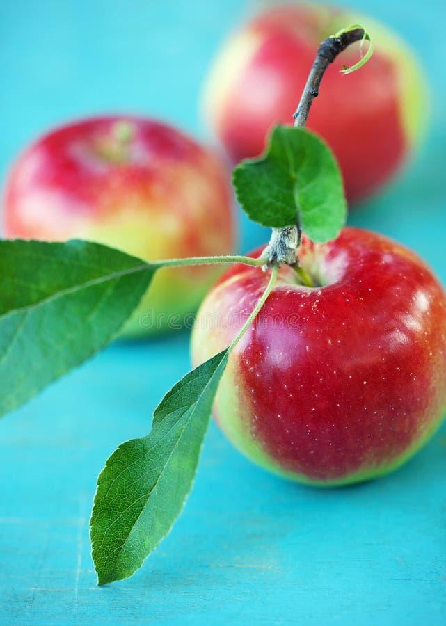 Download Äpfel stockfoto. Bild von exemplar, nahaufnahme, saft - 26352028