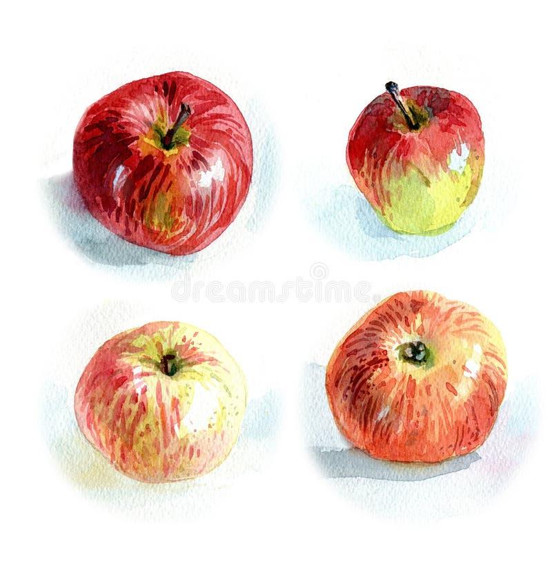 Äpfel #2 vektor abbildung