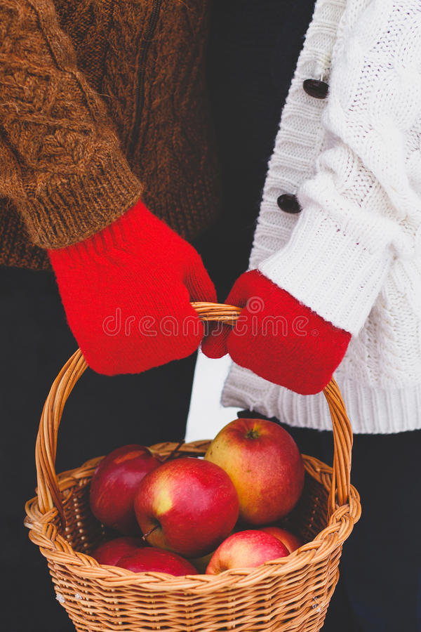 Äpfel in einem Korb stockbild