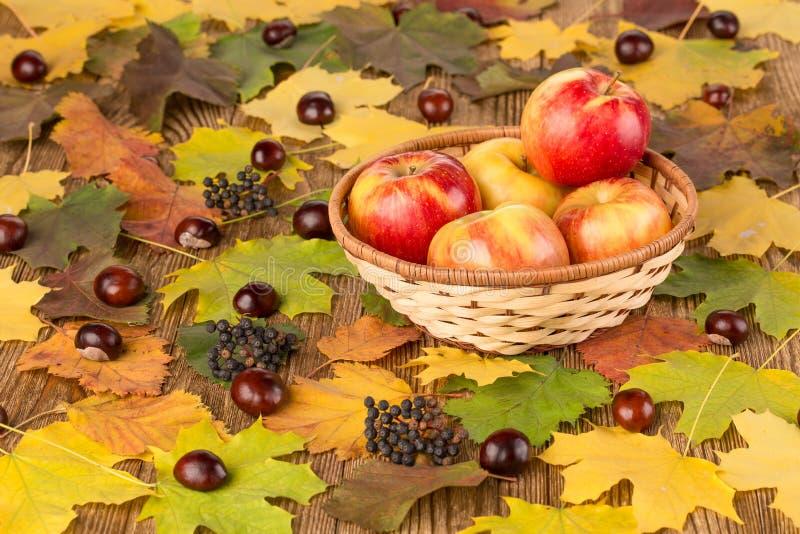 Äpfel in einem Weidenkorb stockfoto